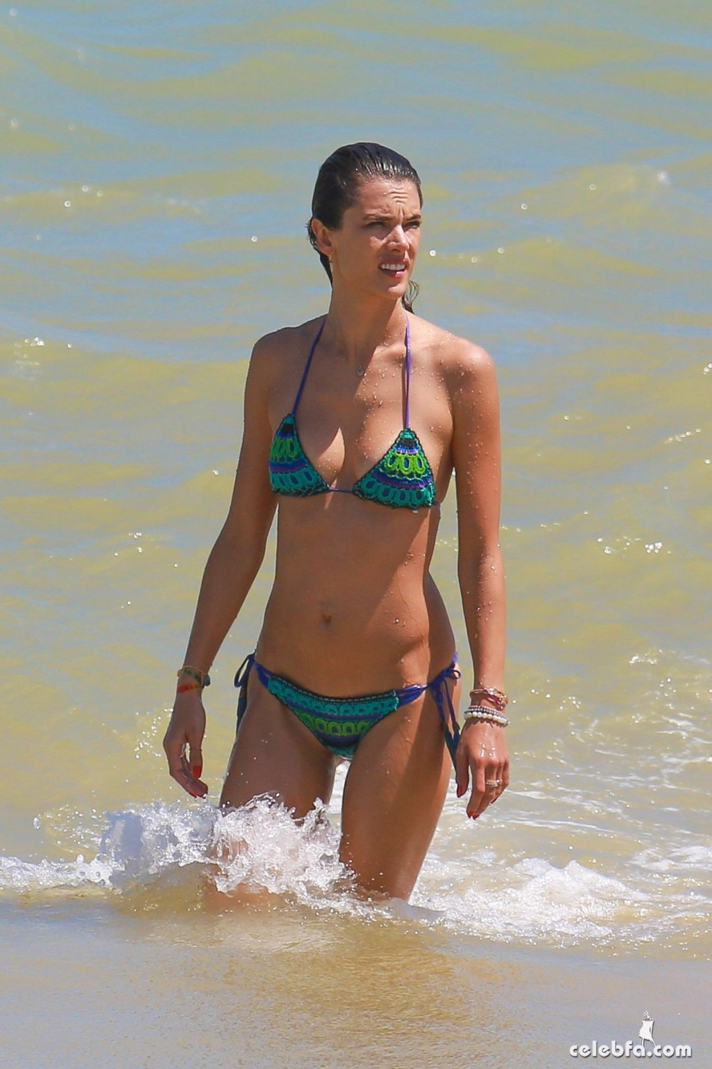 alessandra-ambrosio-in-bikini-at-a-beach-in-brazil-january-2016 (8)