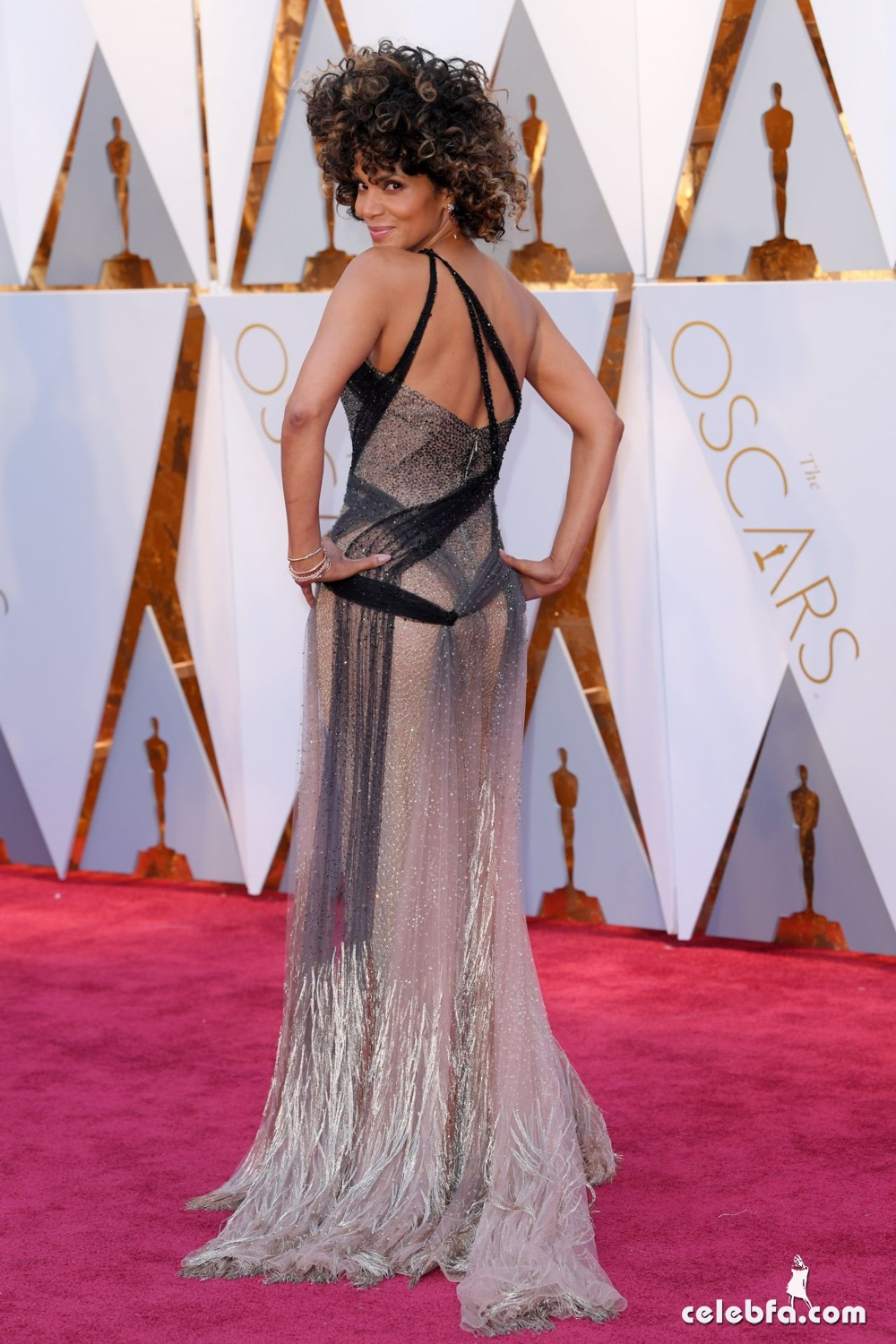 halle-berry-oscars-2017-red-carpet-in-hollywood-3