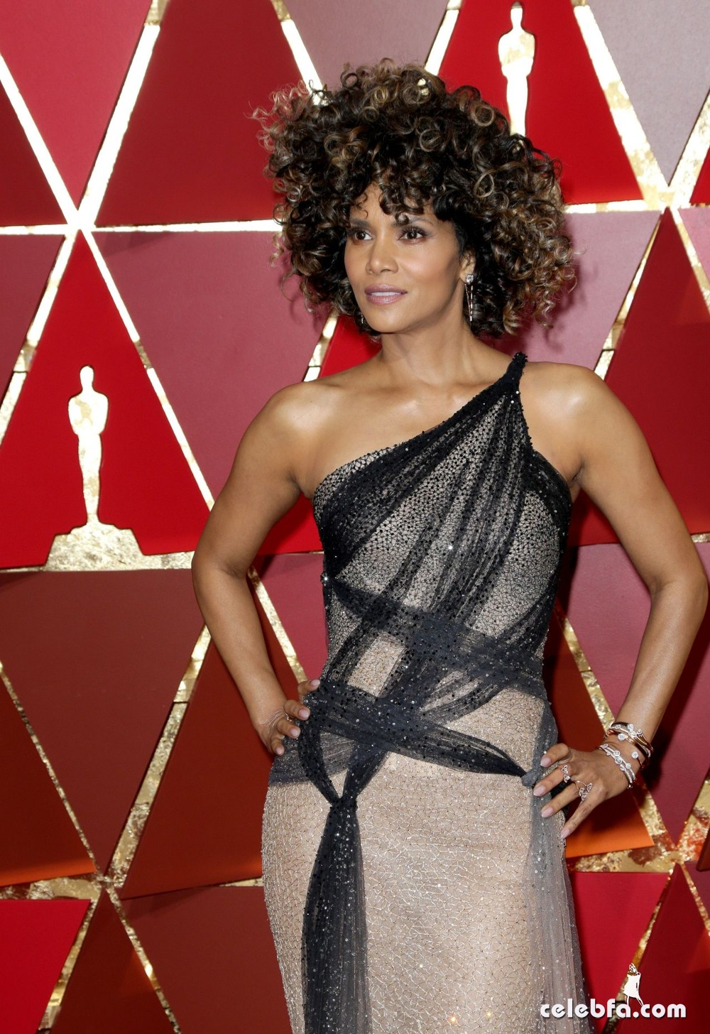 halle-berry-oscars-2017-red-carpet-in-hollywood-5