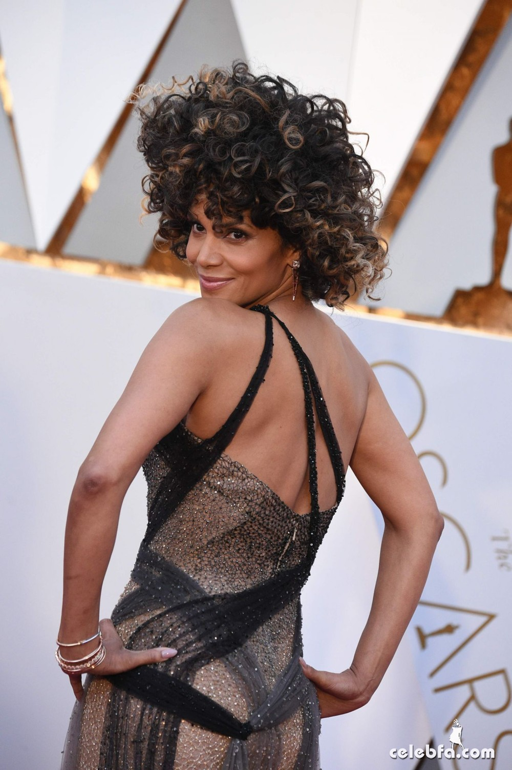 halle-berry-oscars-2017-red-carpet-in-hollywood-6