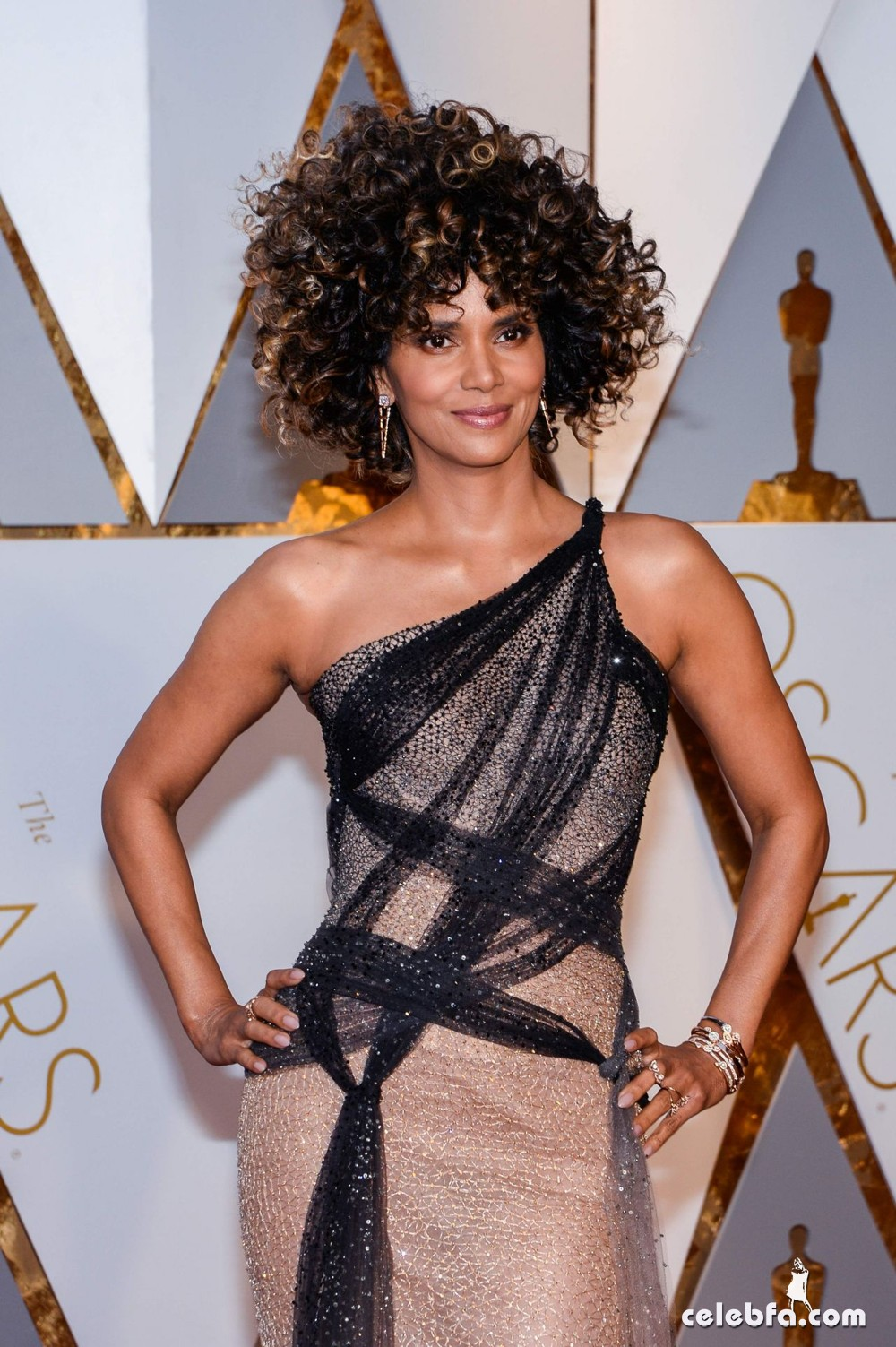 halle-berry-oscars-2017-red-carpet-in-hollywood-7