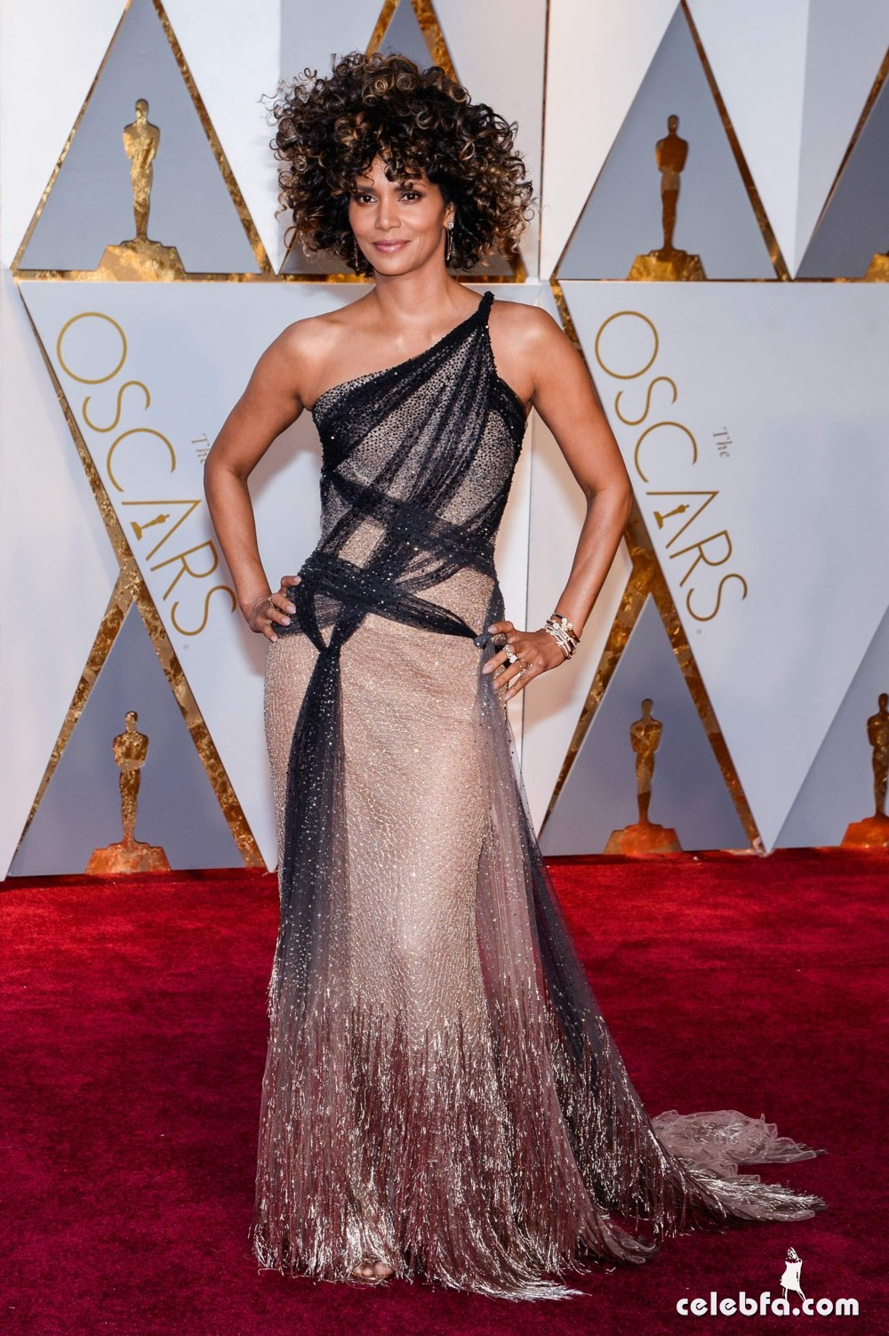 halle-berry-oscars-2017-red-carpet-in-hollywood-8